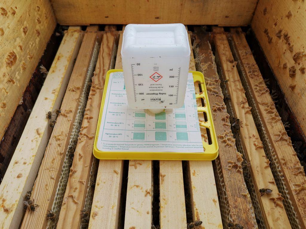 Behandlung der Bienen mit Ameisensäure